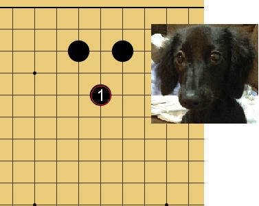 【囲碁の「猫の顔」「犬の顔」「馬の顔」は好形!】知っているだけでお得な石の形